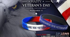 Support Veteran's Day