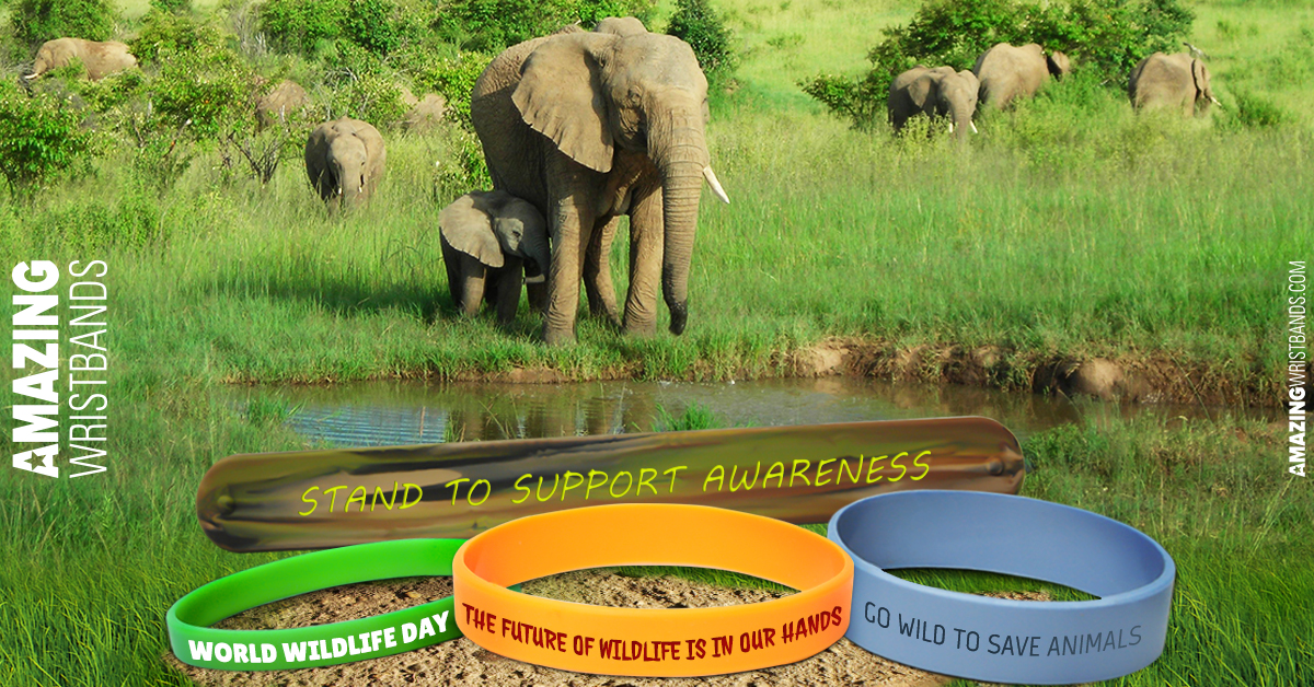 World Wildlife Day Awareness Bands